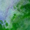 Acrylic paint wash